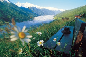 Wandern und Träumen im Grünen (Frühling)